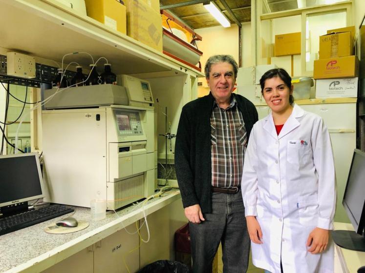 Investigadores del CONICET descubren nuevos aspectos de la secreción de insulina